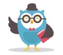 Wise Owl of Feedback